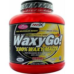 WAXY GO! 2K