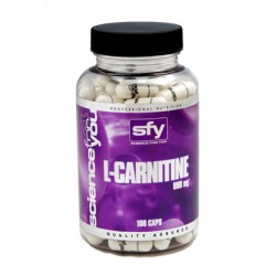L-CARNITINE 100 CAPS 950mg